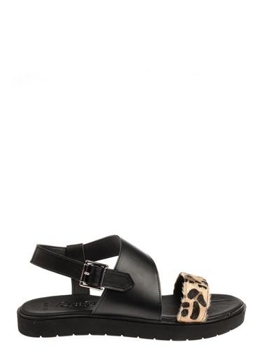 Queen Bee Sandalet Renkli